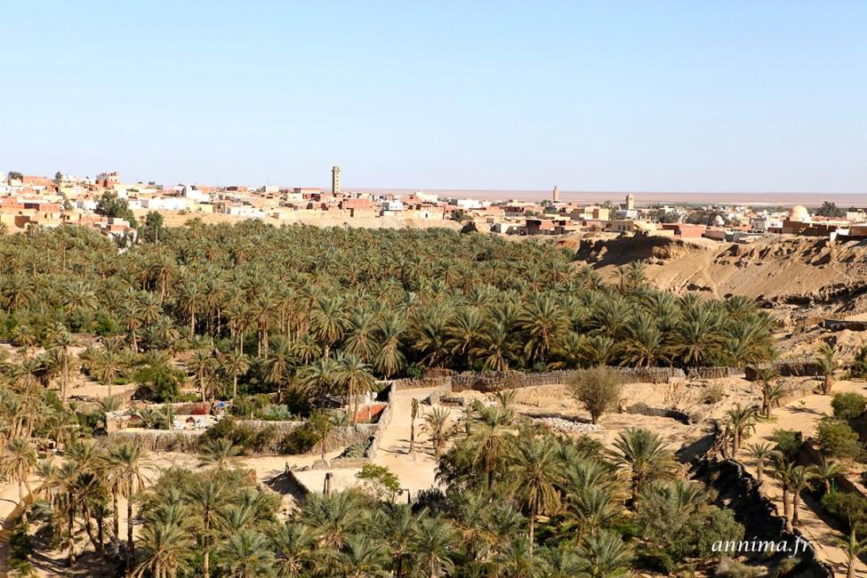 sahara-tunisie19