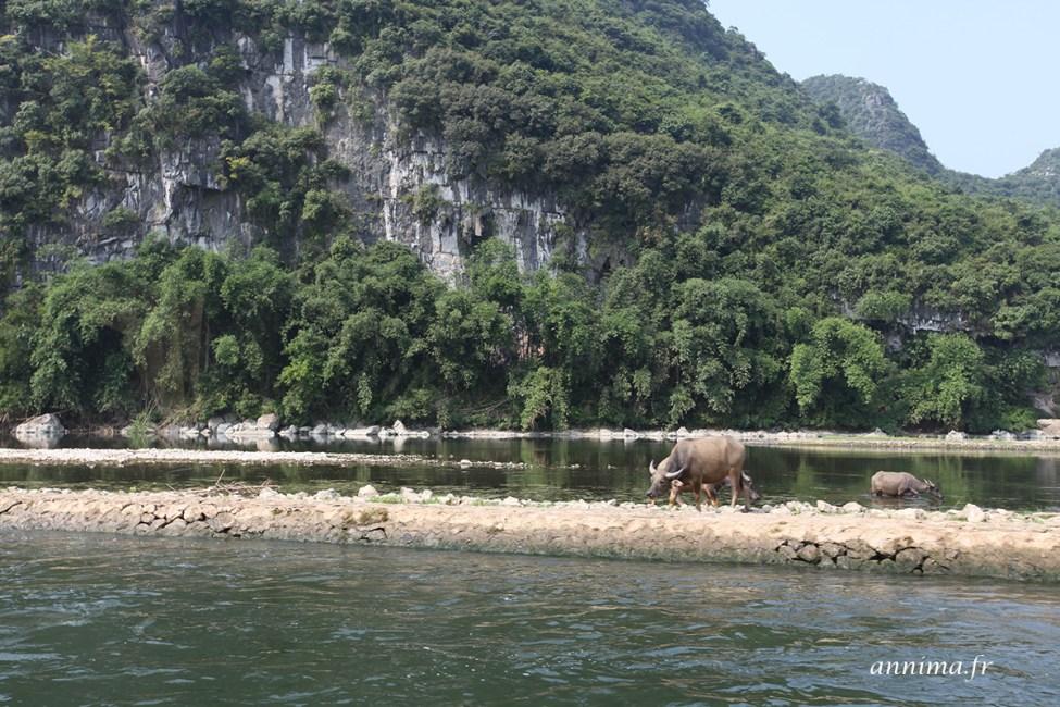 Lijiang9
