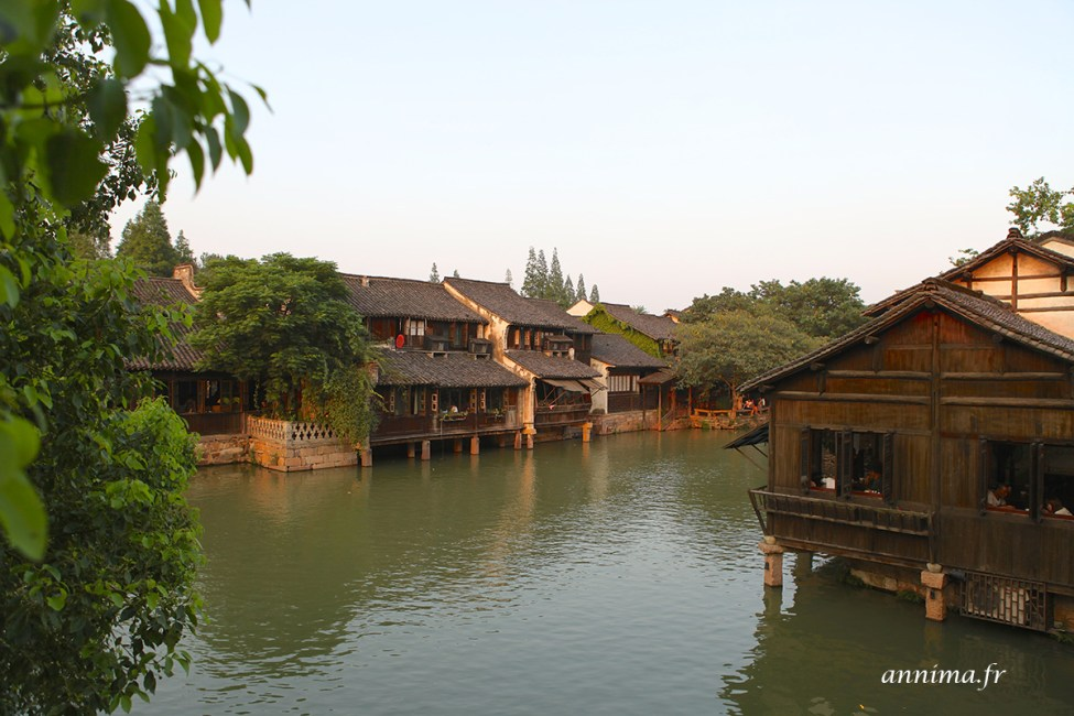 Wuzhen17