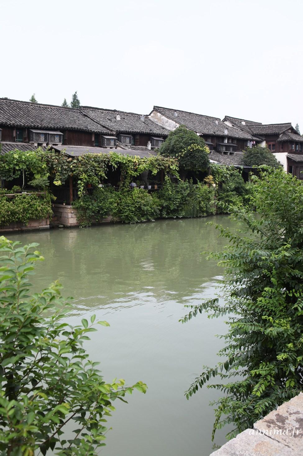Wuzhen5