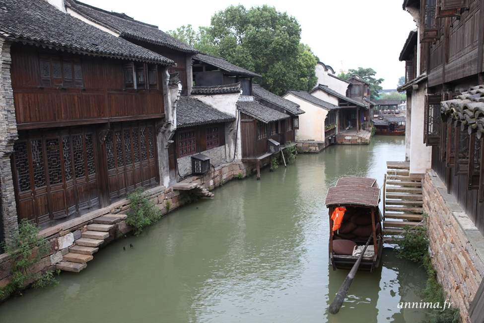 Wuzhen9