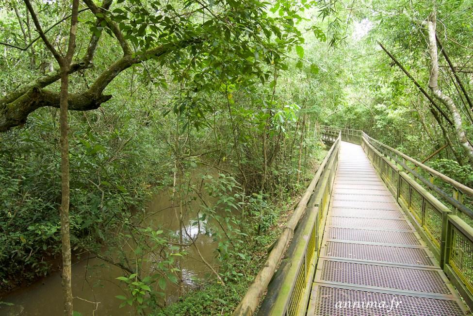 Iguazu-argentine10