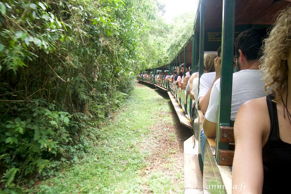 Iguazu-argentine22