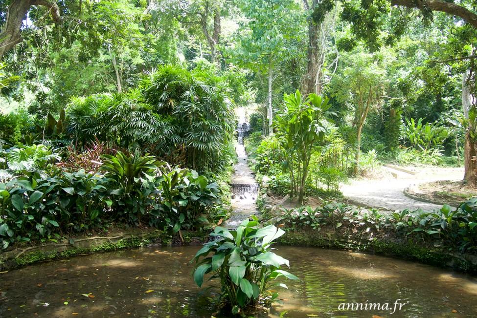 jardin-botanique-rio10