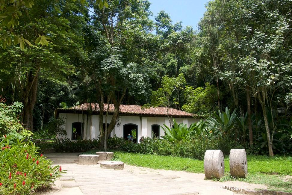 jardin-botanique-rio15