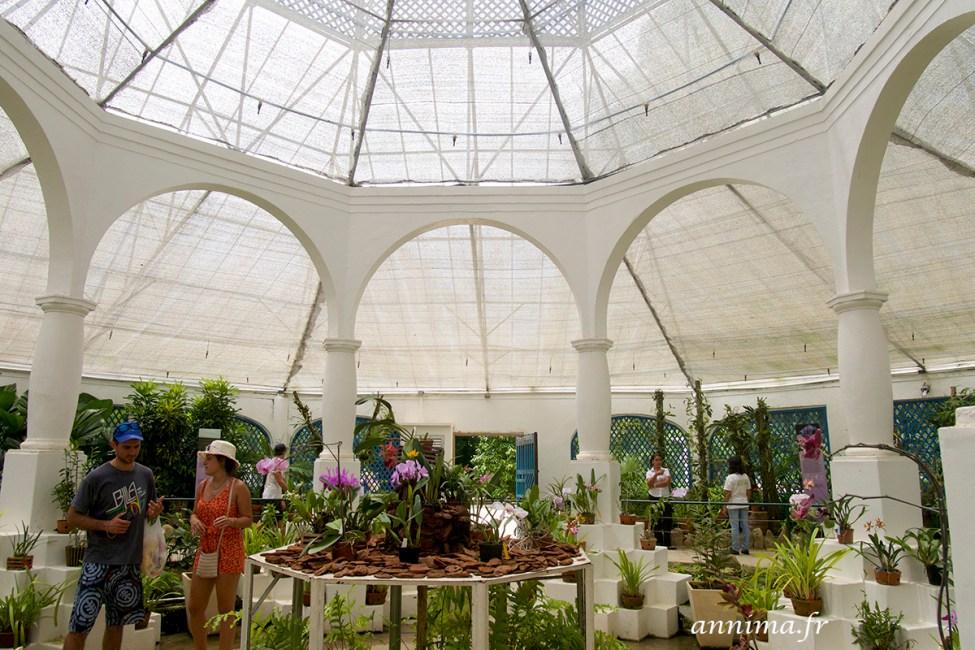 jardin-botanique-rio23