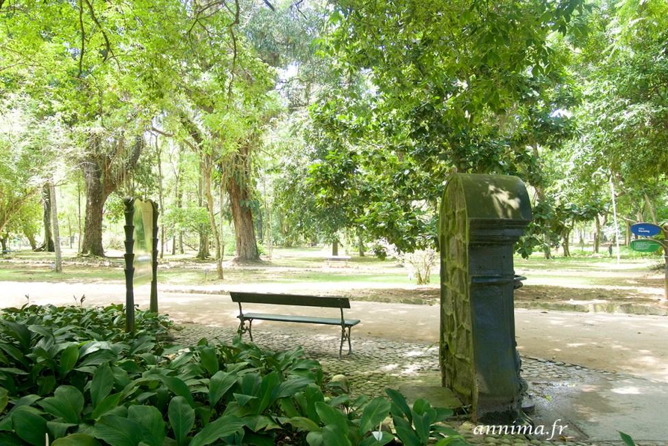 jardin-botanique-rio45