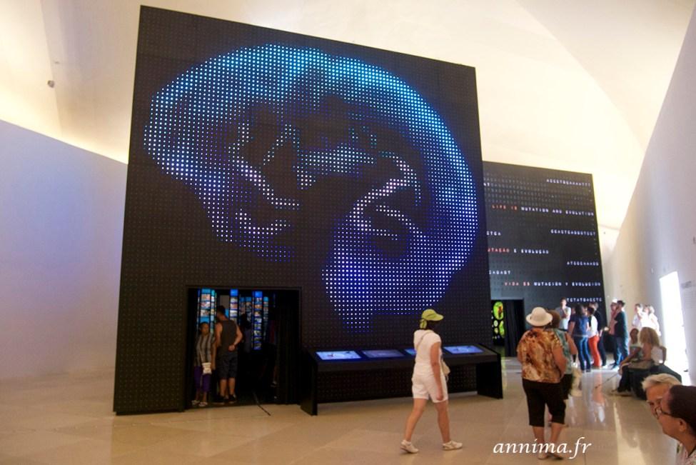 museu-do-amanha15