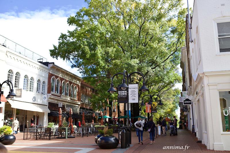USA : Charlottesville loin des émeutes