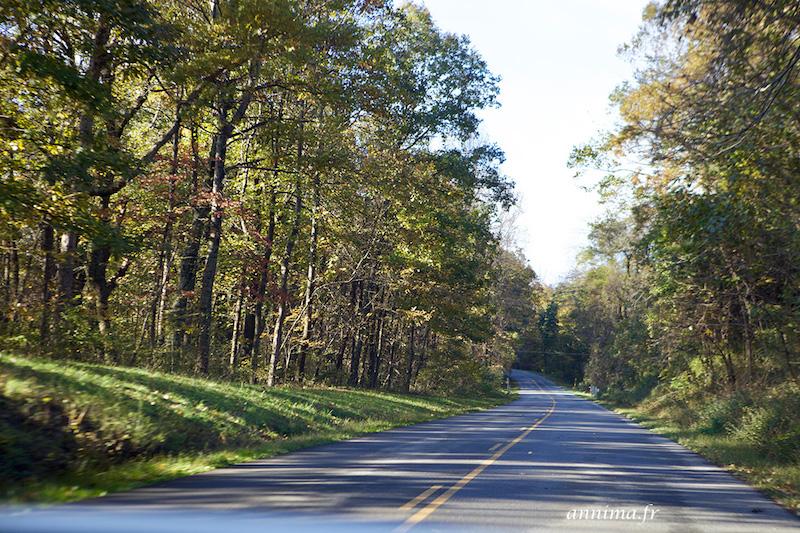USA : les plus belles routes, la Blue Ridge Parkway.