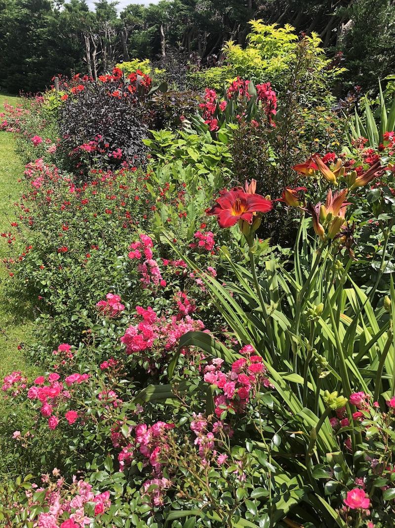 Le jardin des Martels rouge