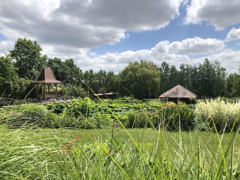 Le jardin des Martels au mois de juin.