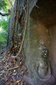 Rock carvings hidden in the forest
