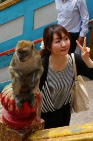 Monkey don't do peace signs