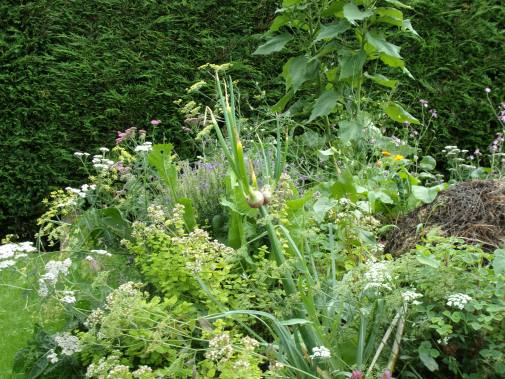 Polyculture 4, September 2016