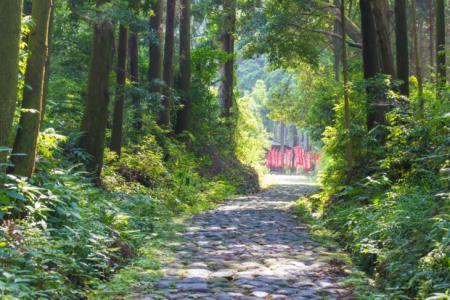 【2021年版】島田市デートならここ!近隣住民おすすめの15スポット【定番から絶景スポット・テラスで楽しめるカフェなど】
