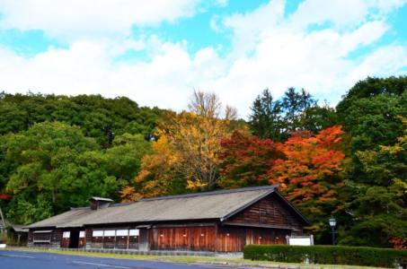 【2021年版】北広島デートならここ!北海道育ちの筆者がおすすめの15スポット【自然が楽しめる◎・グルメやカフェ・ショッピング・ドライブにも】