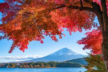 【2021年版】富士山で紅葉ドライブデートならここ!ドライブ好きな筆者がおすすめの15スポット【紅葉・富士山・ロープウェイ・グルメや温泉も】