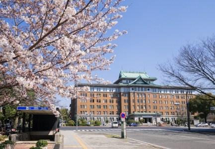 【2021年版】名古屋丸の内周辺で記念日ランチするならここ!地元民おすすめの14店【コスパ◎・ビュッフェ・2000円台など】