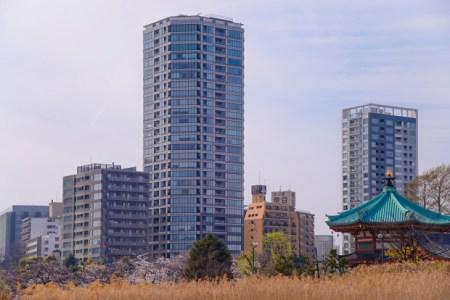 【2021年版】上野のレストランならここ!上野によく行く筆者おすすめの27店【駅チカや上野周辺エリアからバランスよく紹介】
