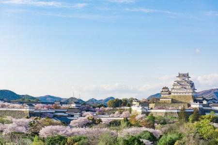 【2021年版】関西で桜ドライブデートならここ!写真撮影大好き筆者おすすめの15スポット