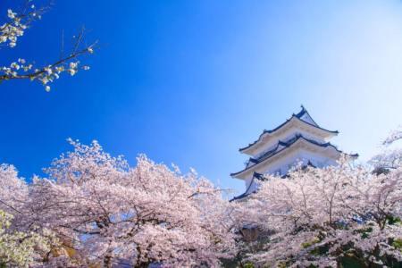 【2021年版】箱根板橋駅周辺デートならここ!関東在住の筆者おすすめの15スポット【定番からパワースポット・御朱印巡り・グルメ・ドライブにも】