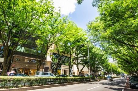 【2020年版】東京でグルメドライブデートならここ!東京通の筆者おすすめの15スポット