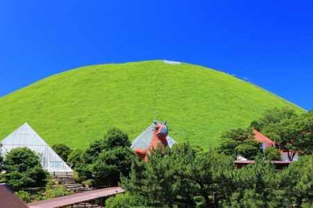 【2021年版】伊豆高原でディナーならここ!静岡出身の筆者おすすめの15店【ご当地グルメ・コスパ◎・おしゃれ・デート向けなど】