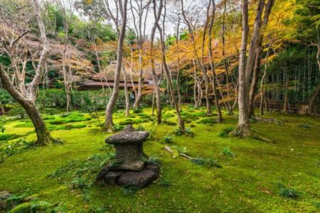 【2021年版】嵯峨野デートならここ!関西人おすすめスポット15選【景観◎・歴史巡り・パワースポットなど】