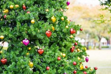 【2021年版】横浜でクリスマスにぴったりなランチならここ!地元民おすすめの店15選【イタリアン・フレンチ・和食など】