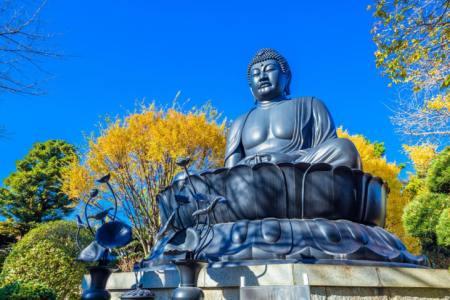 【2021年版】板橋デートならここ!関東在住の筆者おすすめの15スポット【食べ歩き・公園・人気グルメ・美術館など】