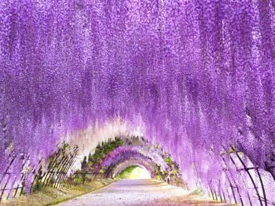 【2021年版】八幡デートならここ!九州在住の筆者おすすめの15スポット【夜景/絶景スポット・自然・グルメなど】