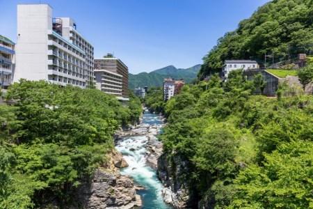 【2021年版】貸切風呂のある鬼怒川温泉旅館おすすめ15選【温泉好きが徹底紹介】