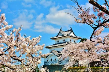 【2021年版】新潟県ドライブデートならここ!ドライブ好き筆者おすすめの30スポット【エリア別・パワースポット・温泉・絶景など】