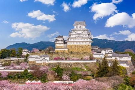 【2020年版】姫路で記念日レストランならココ!地元民厳選のオススメ15店