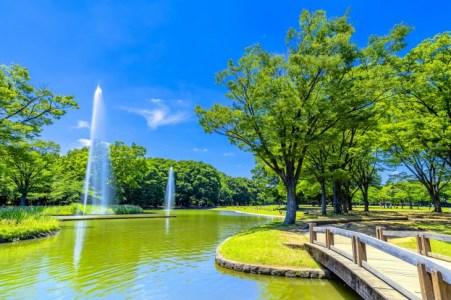 【2021年版】代々木公園周辺で記念日にも使えるご飯ならここ!渋谷エリア通おすすめの13店【3分以内・ペット同伴OK・隠れ家・老舗など】