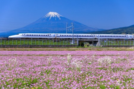 【2021年版】静岡県でドライブデートならここ!静岡通おすすめの30スポット【リゾート・グルメ・ミュージアム・レジャー・都心からのアクセス◎スポットなど】