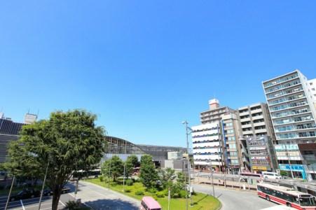 【2021年版】武蔵小金井デートならここ!元在住者おすすめの15スポット【定番からカフェ・散策スポット・グルメまで】