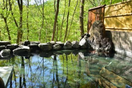 【2021年版】軽井沢の温泉旅館おすすめ15選【軽井沢の地元に詳しい筆者が徹底紹介】天然温泉・ロケーション◎・料理自慢など