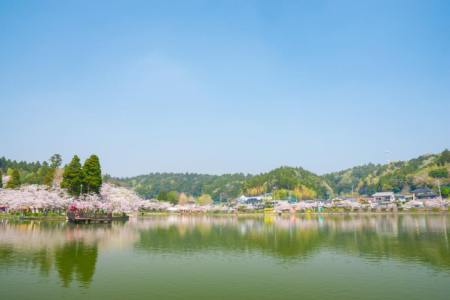 【2021年版】東金デートならここ!千葉県在住の筆者おすすめの15スポット【桜・御朱印めぐり・パワースポット・自然やグルメなど】