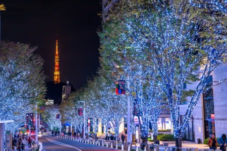 【2021年版】六本木で夜景が見られる記念日向きのレストランならここ!六本木通おすすめの15店【個室あり・老舗・生演奏あり・絶景・東京タワーなど】