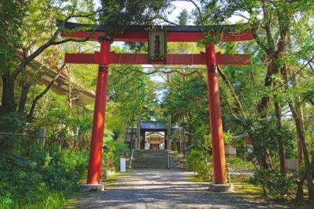 【2021年版】泉佐野デートならここ!大阪在住筆者おすすめの15スポット