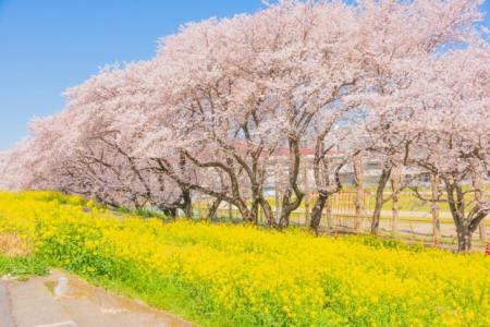 【2021年版】熊谷デートならここ!関東在住の筆者おすすめの15スポット