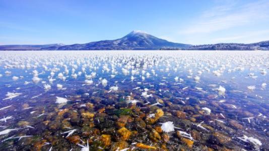 【2021年版】釧路デートならここ!旅好き筆者おすすめの15スポット【動物園からアイヌ・絶景・穴場スポット・海鮮などグルメも】