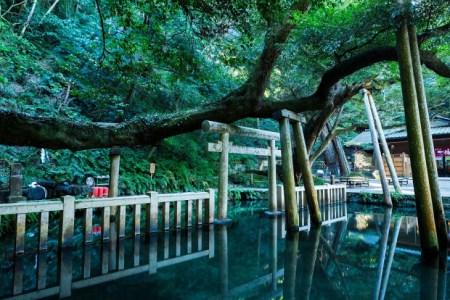 【2021年版】茨城から日帰りドライブデートならここ!関東在住の筆者おすすめの15スポット【パワースポット・ショッピング・寺社仏閣・水族館・レジャーなど】