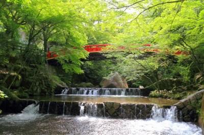 【2021年版】愛知県日帰りドライブデート50選!名古屋出身者おすすめのフォトスポット・ロマンチック・自然やカフェまで
