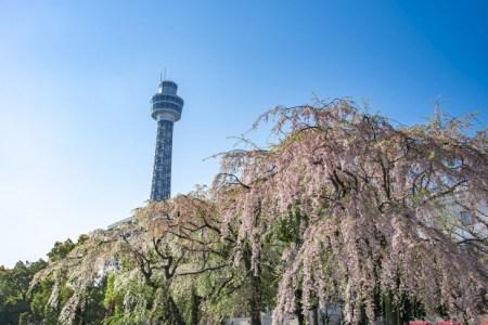 【2021年版】元町デートならここ!横浜好きおすすめの12スポット【レジャー・公園・おしゃれカフェ・中華街・グルメなど】