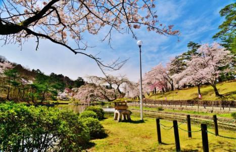 【2021年版】長岡駅周辺デートならここ!新潟デート経験者おすすめの15スポット【定番から花火大会・桜・自然・お土産・歴史や水族館など】