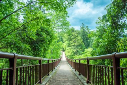 【2021年版】あきる野デートならここ!関東在住筆者おすすめの15スポット【マイナスイオンを感じられる・自然・温泉・グルメなど】