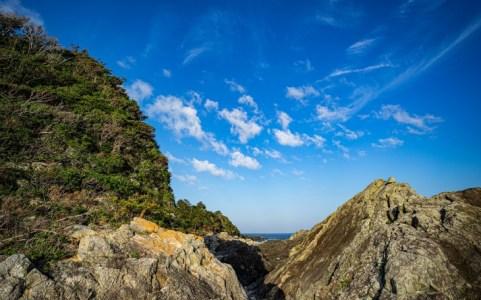 【2021年版】関西の海ドライブデートならここ! 海大好きな筆者おすすめの15スポット【生き物・絶景・グルメ・夜景・クルーズなど】